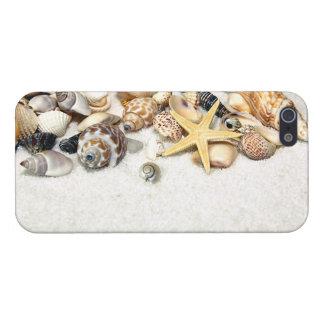 Seashells iPhone 5 Case
