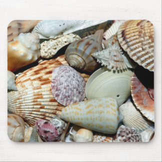 seashells mouse pad