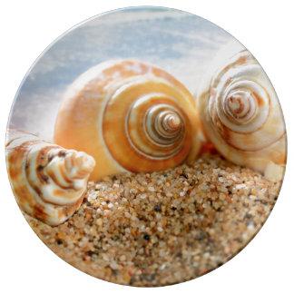 Seashells On Beach Plate