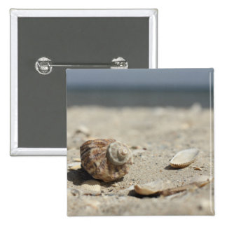 Seashells On Sand By The Sea 2 Inch Square Button