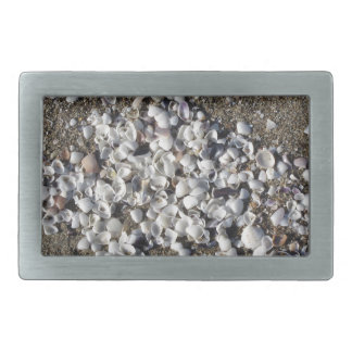 Seashells on sand. Summer beach background Belt Buckle