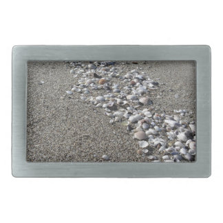 Seashells on sand. Summer beach background Belt Buckle