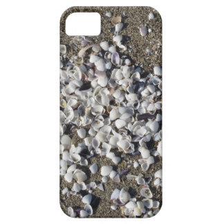 Seashells on sand. Summer beach background Case For The iPhone 5