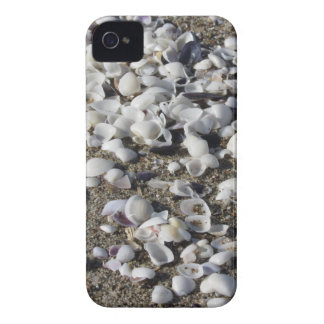 Seashells on sand. Summer beach background Case-Mate iPhone 4 Case