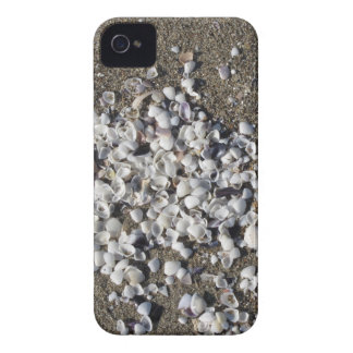 Seashells on sand. Summer beach background iPhone 4 Case-Mate Case