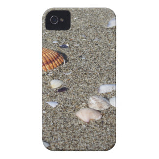 Seashells on sand. Summer beach background iPhone 4 Cover