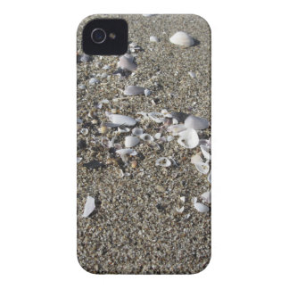 Seashells on sand. Summer beach background iPhone 4 Covers