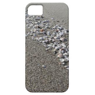 Seashells on sand. Summer beach background iPhone 5 Case
