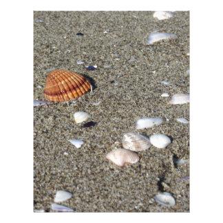 Seashells on sand. Summer beach background Letterhead Template