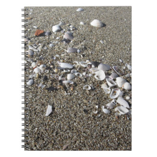 Seashells on sand. Summer beach background Notebooks