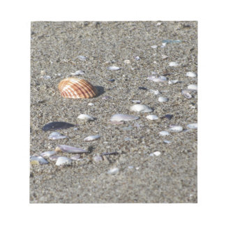 Seashells on sand. Summer beach background Notepad