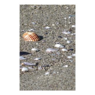 Seashells on sand. Summer beach background Stationery