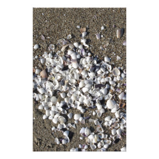 Seashells on sand. Summer beach background Stationery