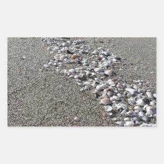 Seashells on sand. Summer beach background Sticker