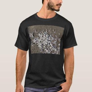 Seashells on sand. Summer beach background T-Shirt