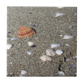 Seashells on sand. Summer beach background Tile