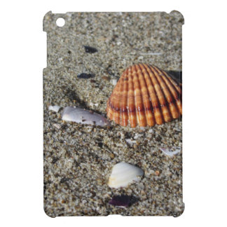 Seashells on sand Summer beach background Top view iPad Mini Cover