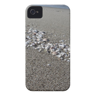Seashells on sand Summer beach background Top view iPhone 4 Case-Mate Case