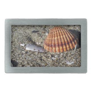 Seashells on sand Summer beach background Top view Rectangular Belt Buckle