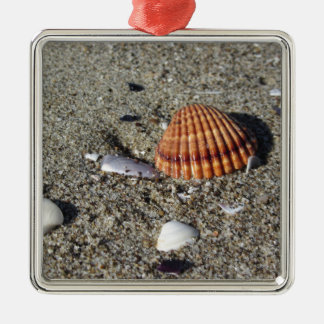Seashells on sand Summer beach background Top view Silver-Colored Square Ornament