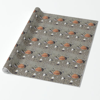 Seashells on sand Summer beach background Top view Wrapping Paper