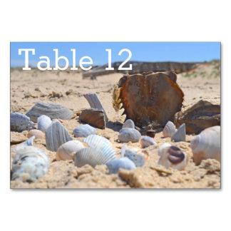 Seashells on the Beach by Shirley Taylor Card