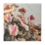 Seashells on the Beach | Turks and Caicos Photo Ceramic Tiles