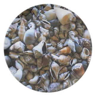 """Seashells"" Plate"