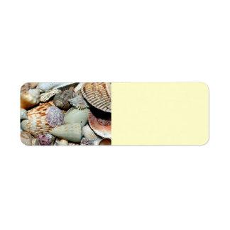 seashells return address label