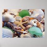 Seashells, Starfish & Beach Glass Poster
