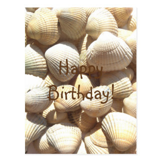 Seashells Summer, Happy Birthday Congratulations Postcard