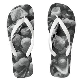 Seashore Flip Flops