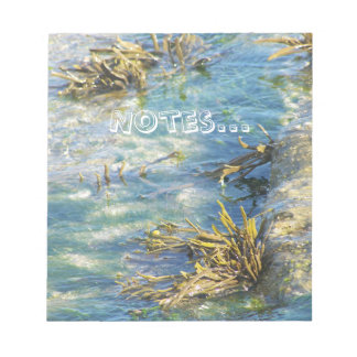 seaside collection notebook1 notepad