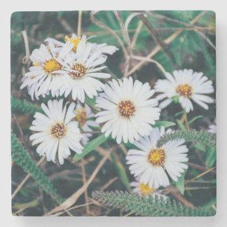 Seaside Daisies | Stone Coaster