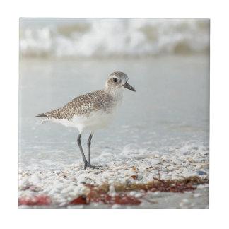 Seaside Plover Tile