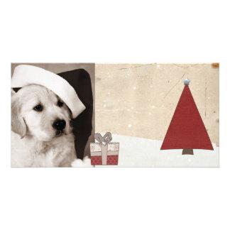 season greeting christmas pet photo cards