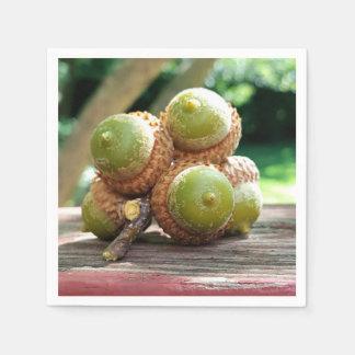 Seasonal Fall Acorns On Twig Photography Paper Napkin