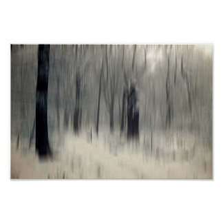 Seasonal Trees Poster