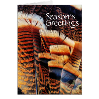 Seasonal Turkey Tail Feathers Generic Holiday Card