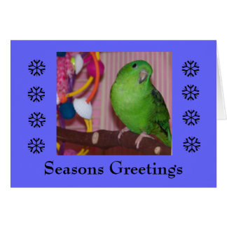 Seasons Greeting - Blank Card