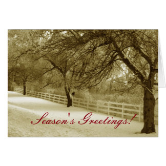 Seasons Greetings Customizable Holiday Card