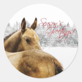 Season's Greetings Foal Classic Round Sticker
