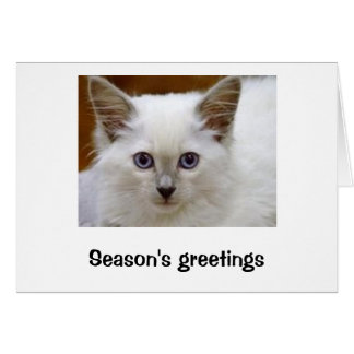 Season's greetings from baby cat Senna Card