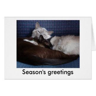 Seasons' greetings from Senna & Lonso Card