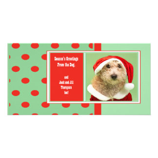 Season's Greetings From the Dog Cute Photo Greeting Card