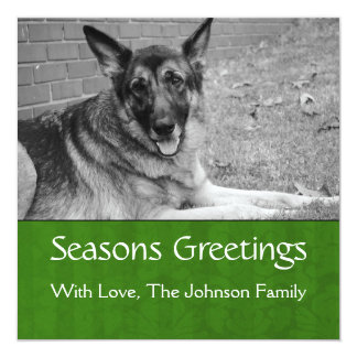 Seasons Greetings Green Background Photo Template Card