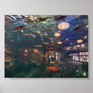 Seattle Aquarium Poster