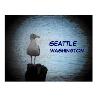 Seattle Seagull Post Card