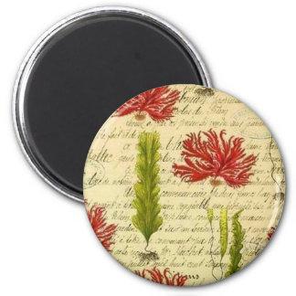 Seaweed and chorales magnet
