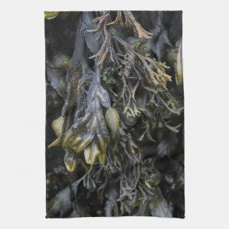 Seaweed. Kitchen Towel
